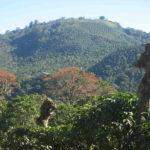 Economia in Costa Rica