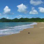 Viaggio nell'oasi faunistica di Bahia Junquillal