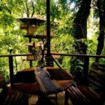 Finca Bellavista, vacanze ecosostenibili nella casa sugli alberi