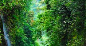 Parco Nazionale Barbilla